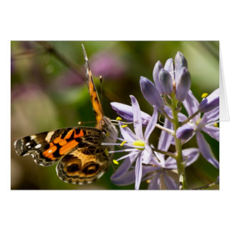 Orange Butterfly on Wild Hyacinth Apparel & Gifts Card