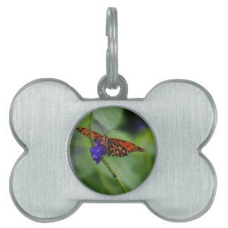 Orange Butterfly Pet ID Tag
