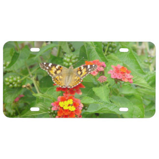 Orange Butterfly Pink Flowers License Plate