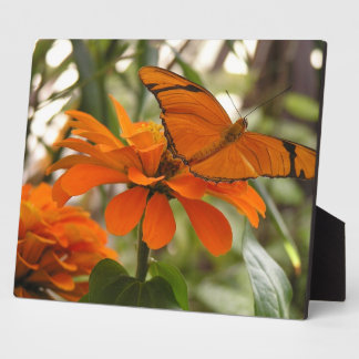 Orange Butterfly Plaque