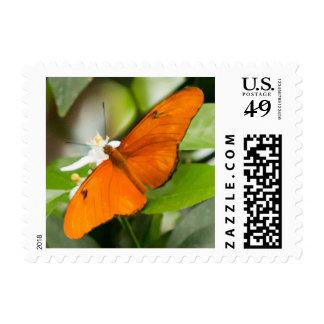 Orange Butterfly Postage Stamp