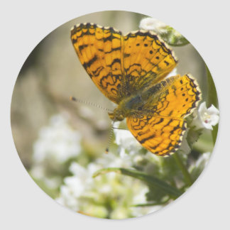Orange Butterfly Round Stickers