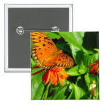 Orange Butterfly Upclose Button