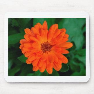 Orange Calendula Marigold Design Mouse Pad