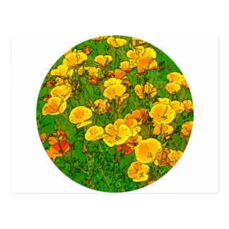 Orange California Poppies 2.2_rd Postcard
