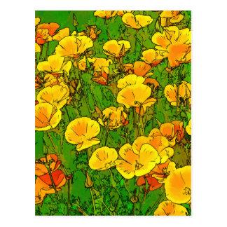 Orange California Poppies Postcard