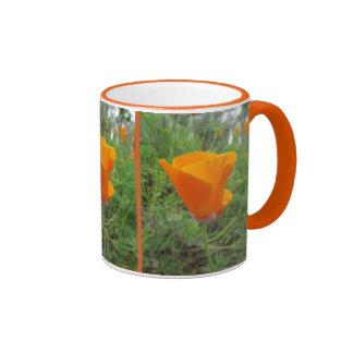 Orange California Poppy flowers Coffee Mugs