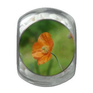 Orange California Poppy Glass Candy Jar