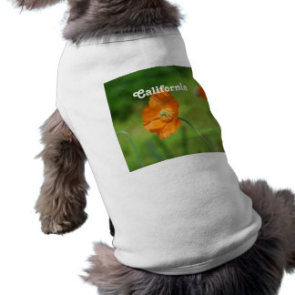 Orange California Poppy Shirt
