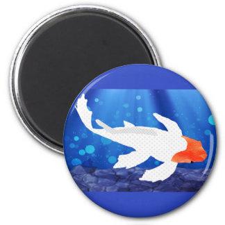 Orange Capped Kohaku Koi in Blue Lagoon Magnets