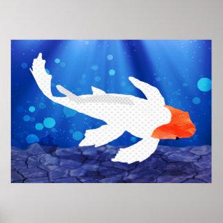 Orange Capped Kohaku Koi in Blue Lagoon Poster