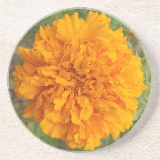 Orange Carnation coaster