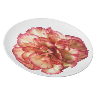 Orange Carnation Plate