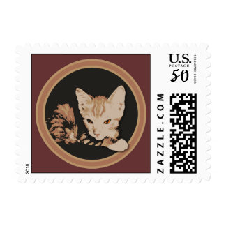 Orange Cat Circle Stamps