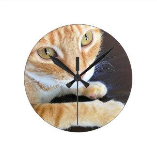 Orange cat closeup round clock
