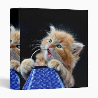Orange Cat Cub Playing and Biting Blue Binder