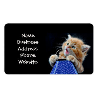 Orange Cat Cub Playing and Biting Blue Double-Sided Standard Business Cards (Pack Of 100)