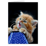 Orange Cat Cub Playing and Biting Blue Greeting Card