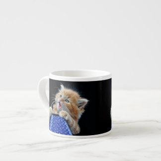 Orange Cat Cub Playing and Biting Blue Espresso Cup