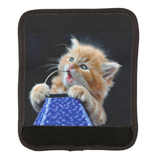 Orange Cat Cub Playing and Biting Blue Luggage Handle Wrap