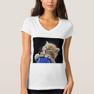 Orange Cat Cub Playing and Biting Blue T-Shirt
