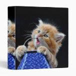 Orange Cat Cub Playing and Biting Blue Vinyl Binders