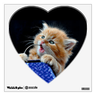 Orange Cat Cub Playing and Biting Blue Wall Decal