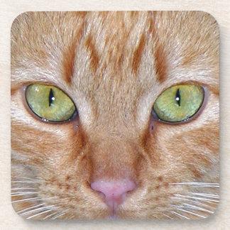 Orange Cat Eyes Coaster