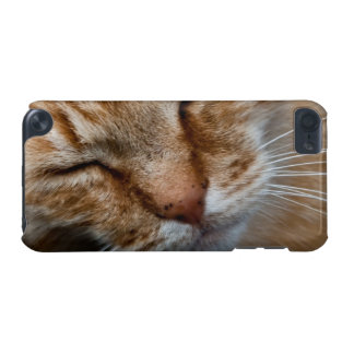 Orange cat face iPod touch (5th generation) case
