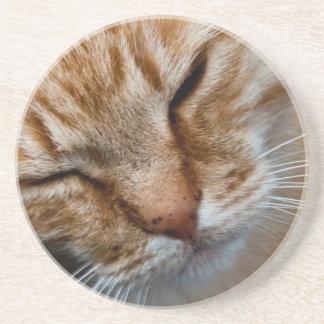 Orange cat face drink coaster