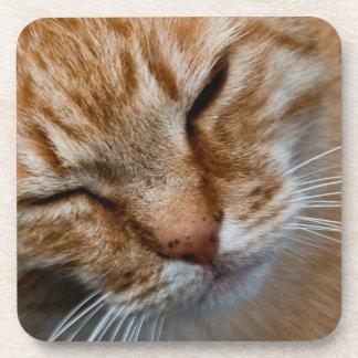 Orange cat face beverage coasters