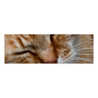 Orange cat face Double-Sided mini business cards (Pack of 20)