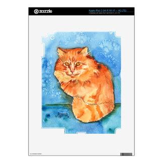 Orange Cat iPad 3 Decals