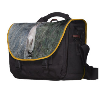 Orange cat bags for laptop