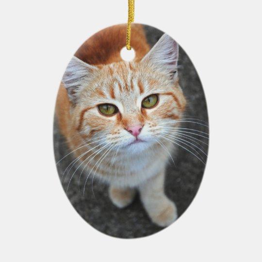 Orange Cat Ornament