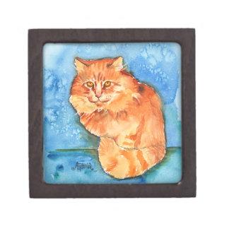 Orange Cat Premium Jewelry Box