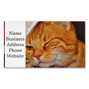 Orange cat - Santa claus cat - merry christmas Magnetic Business Card