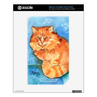 Orange Cat Skins For The NOOK Color