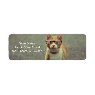 Orange cat with glasses label