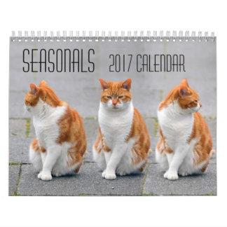 Orange Cats 2017 calendar