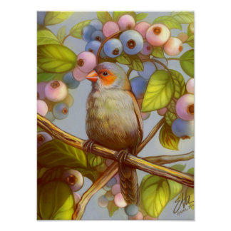 Orange cheeked waxbill finch with blueberries poster