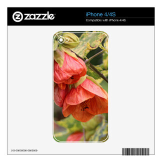 Orange Chinese lantern abutilon flowers Decals For iPhone 4