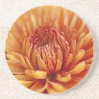 Orange Chrysantemum Sandstone Coaster