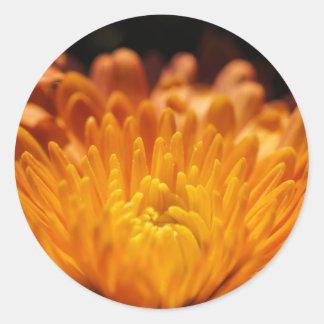 Orange Chrysanthemum Flower Round Stickers