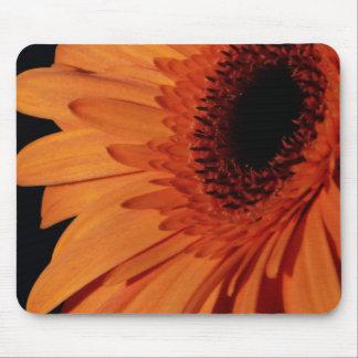 Orange Chrysanthemum Mouse Pad
