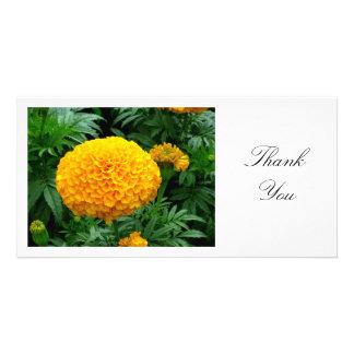Orange Chrysanthemum - Thank You Card