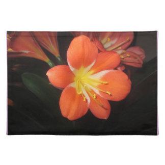 Orange Clivia Kaffir Lily Placemats