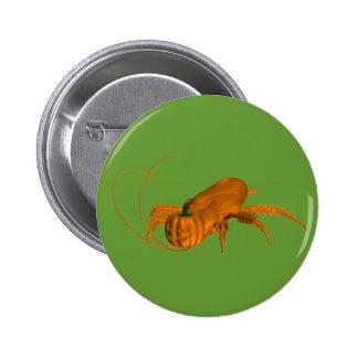 Orange Cockroach Pins