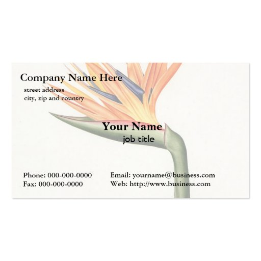 orange color flowers,Pierre Joseph Redouté Double-Sided Standard Business Cards (Pack Of 100)