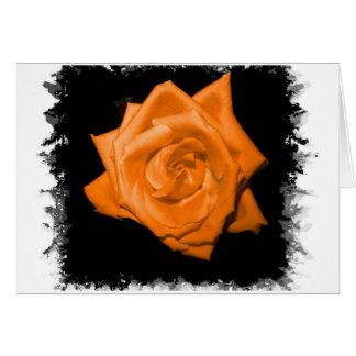 Orange colored rose against black back greeting card